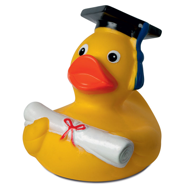 Diploma squeaking duck
