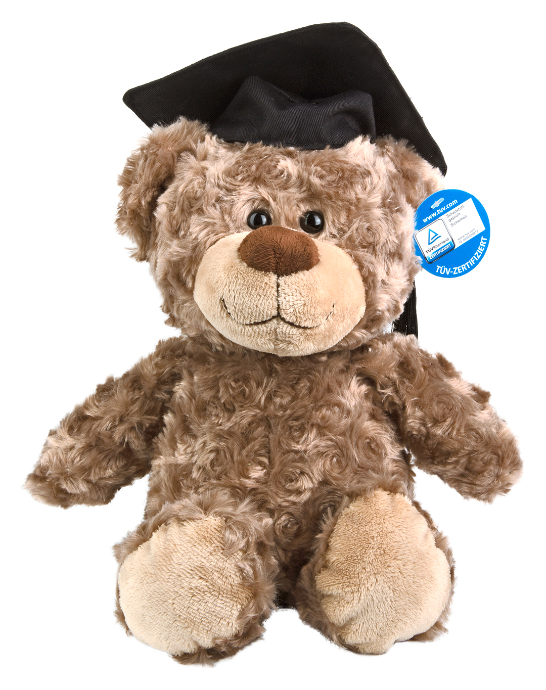 plush bear Bodo graduate, medium size